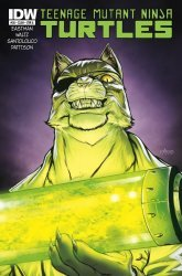 IDW Publishing's Teenage Mutant Ninja Turtles Issue # 38