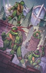 IDW Publishing's Teenage Mutant Ninja Turtles: 30th Anniversary Special Issue # 1nycc-c