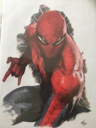 Marvel Comics's The Amazing Spider-Man Issue # 797fan expo-b