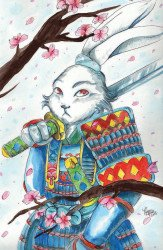 IDW Publishing's Usagi Yojimbo Issue # 1jaks