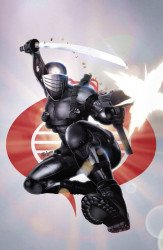 IDW Publishing's G.I. Joe: A Real American Hero Issue # 275simple/616-b