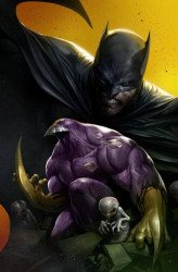 IDW Publishing's Batman / Maxx: Arkham Dreams Issue # 1scotts-a