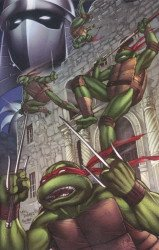 IDW Publishing's Teenage Mutant Ninja Turtles: 30th Anniversary Special Issue # 0accc-a
