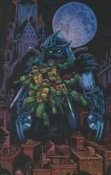 IDW Publishing's Teenage Mutant Ninja Turtles: 30th Anniversary Special Issue # 1limited