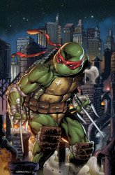 IDW Publishing's Teenage Mutant Ninja Turtles Issue # 102slab city