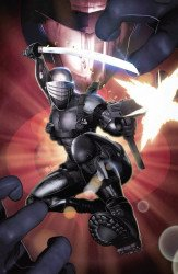 IDW Publishing's G.I. Joe: A Real American Hero Issue # 275simple/616-a