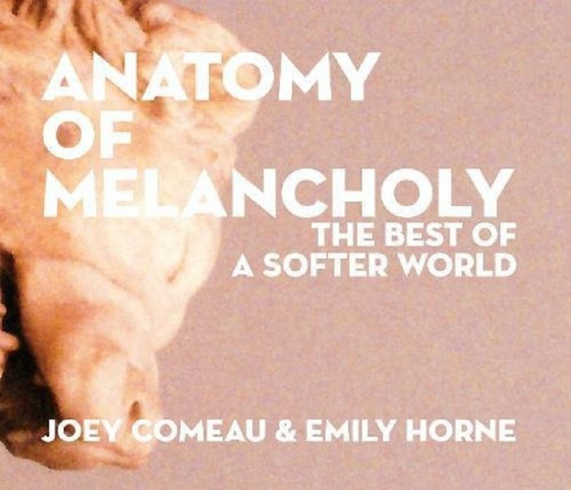 Anatomy of Melancholy Hard Cover 1 (A Softer World) - ComicBookRealm.com