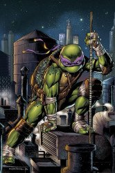 IDW Publishing's Teenage Mutant Ninja Turtles Issue # 104slab city