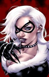 Marvel Comics's Black Cat Issue # 1limited edition-b