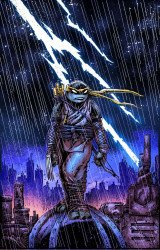 IDW Publishing's Teenage Mutant Ninja Turtles Issue # 99d