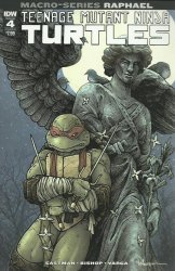 IDW Publishing's Teenage Mutant Ninja Turtles: Macro-Series - Raphael Issue # 1