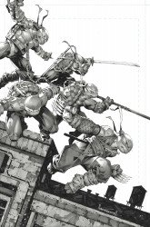 IDW Publishing's Teenage Mutant Ninja Turtles Issue # 106big time