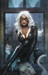 Marvel Comics's Black Cat Issue # 1ce-b