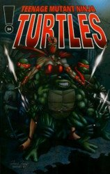 Andrew Modeen's Teenage Mutant Ninja Turtles Issue # 24error