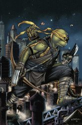 IDW Publishing's Teenage Mutant Ninja Turtles Issue # 105slab city