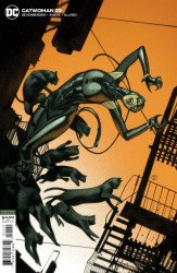 DC Comics's Catwoman Issue # 22b