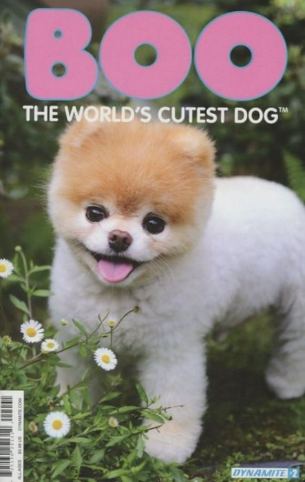 Top Boo Army Adorable Dog - dynamite-entertainment-boo-worlds-cutest-dog-issue-2d  Graphic_383466  .jpg