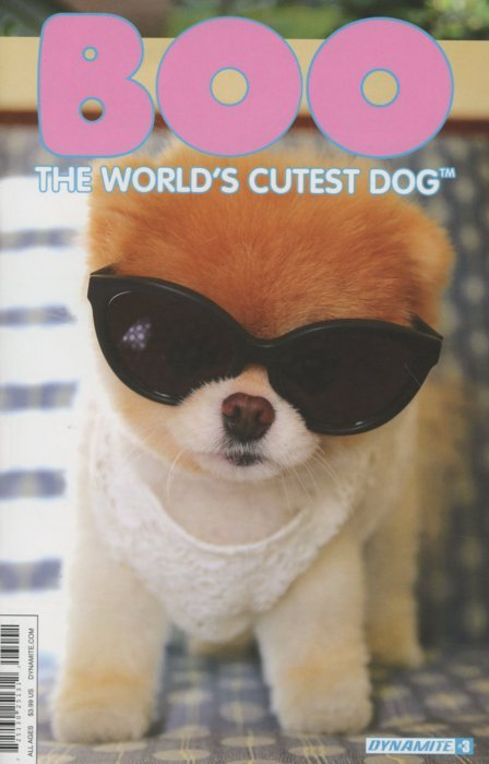 Cool Boo Army Adorable Dog - dynamite-entertainment-boo-worlds-cutest-dog-issue-3d  You Should Have_32218  .jpg