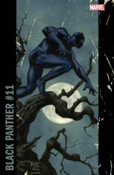 Marvel Comics's Black Panther Issue # 11c