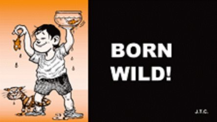 Chick Publications's Born Wild! Issue nn