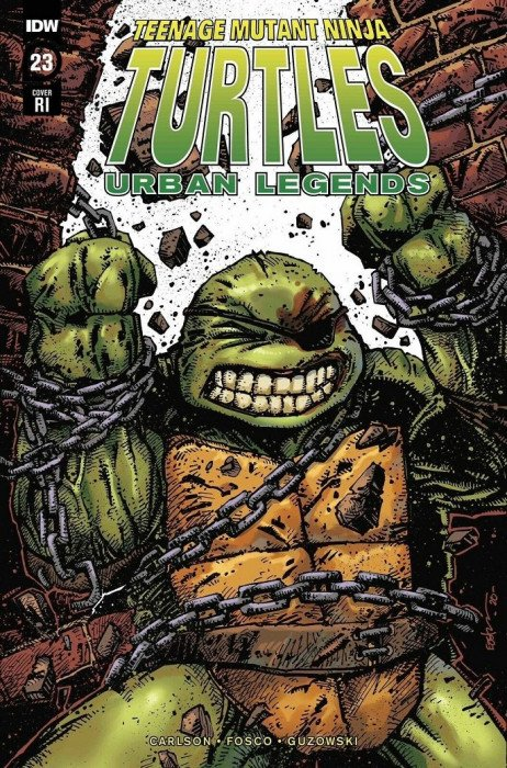 teenage mutant ninja turtles idw publishing