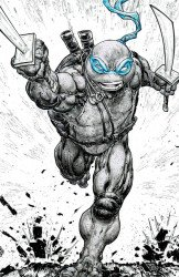 IDW Publishing's Teenage Mutant Ninja Turtles Issue # 110evolve-b