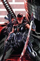 IDW Publishing's G.I. Joe: A Real American Hero Issue # 250krs-b